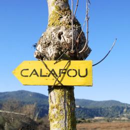 Taller de seguretat digital i activisme a Calafou