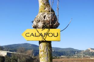 Taller de seguridad digital y activismo en Calafou