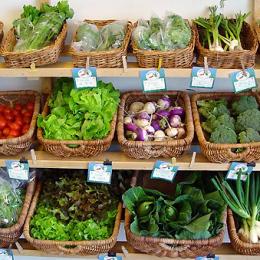 Els efectes de les cooperatives de consum ecològic