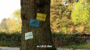 Sobirania: autogovern assembleari, comunals i autosuficiència