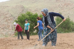 Autogovern econòmic en l'autonomia democràtica. L'exemple de Bakur (Kurdistan turc)